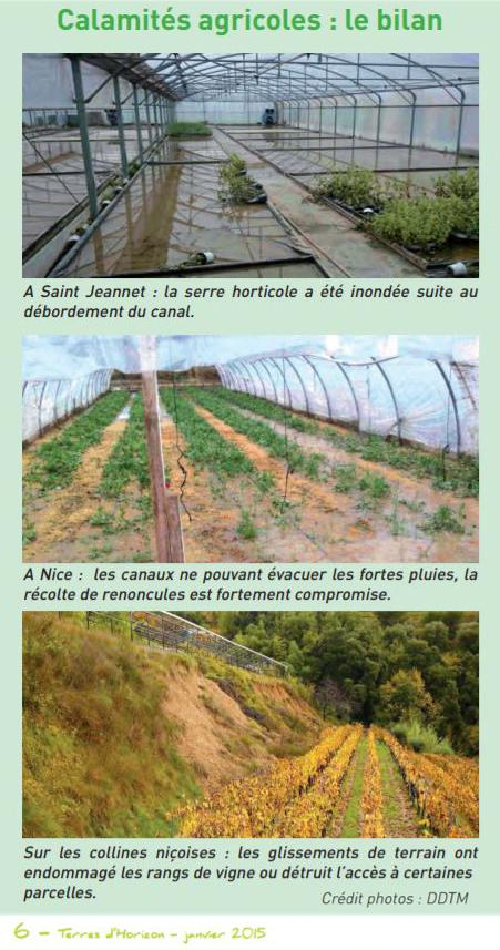 2014-11: Inondations Plaine du Var - Calamites agricoles: le bilan (Chambre d'agriculture 06)